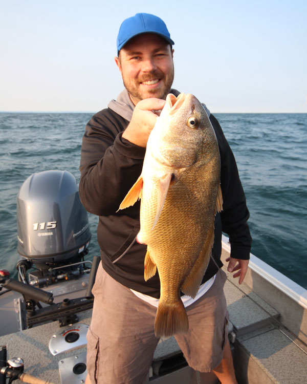 how to catch walleye in lake erie