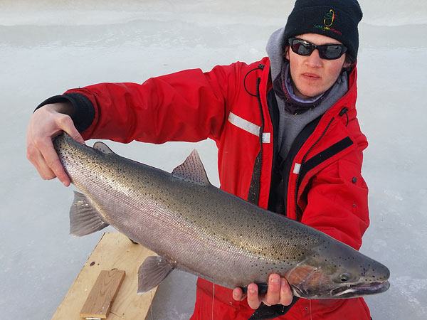 Chris with some nice steelies on the ice! Look at that rod bend with the centrepin!