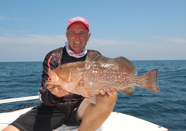 italo_grouper