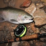 "Italo video, ""Trout & Salmon Tributary Fishing- Art of Imitation."""