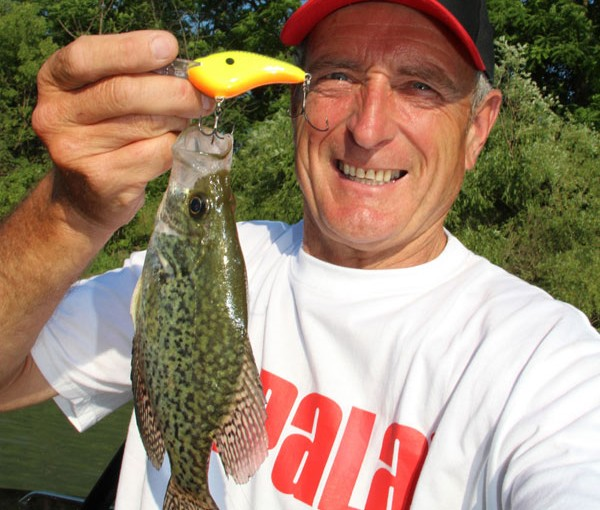crappie_rapala_dt7f