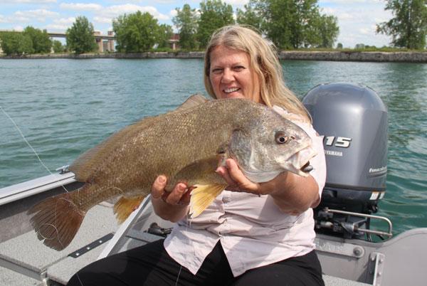 Jigging sheepshead in deep water canadian sportfishing for Sheepshead fish florida