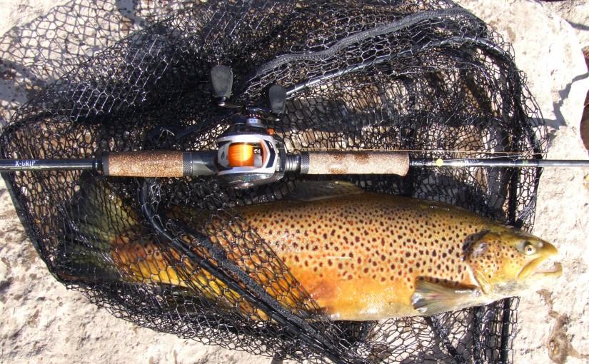brown baitcaster shot