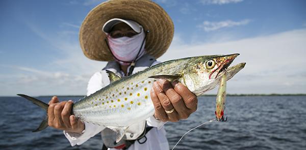 Spanish Flats Mackerel Florida Canadian Sportfishing