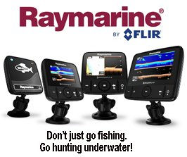 Raymarine Dragonfly Team