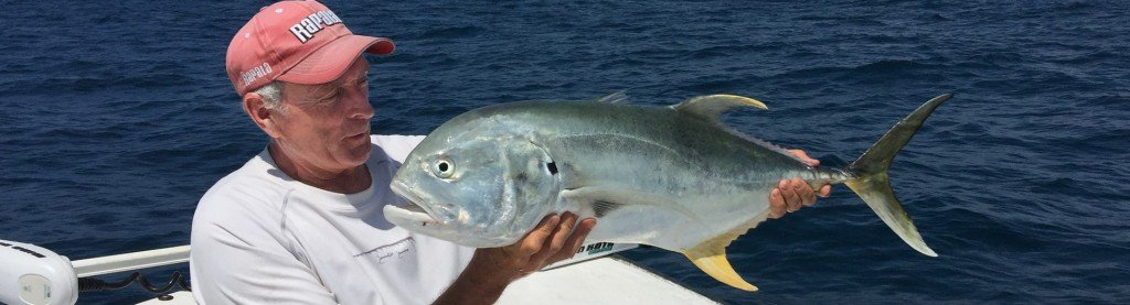 Gulf of Mexico Jack Crevalle