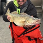 Lake Erie ice Walleye, Rainbows and Perch.